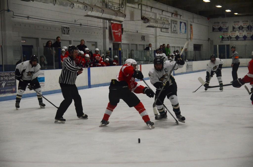 Hockey Makes the Final Four