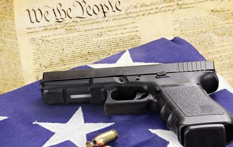 BLOG: New Perspective on Gun Control
