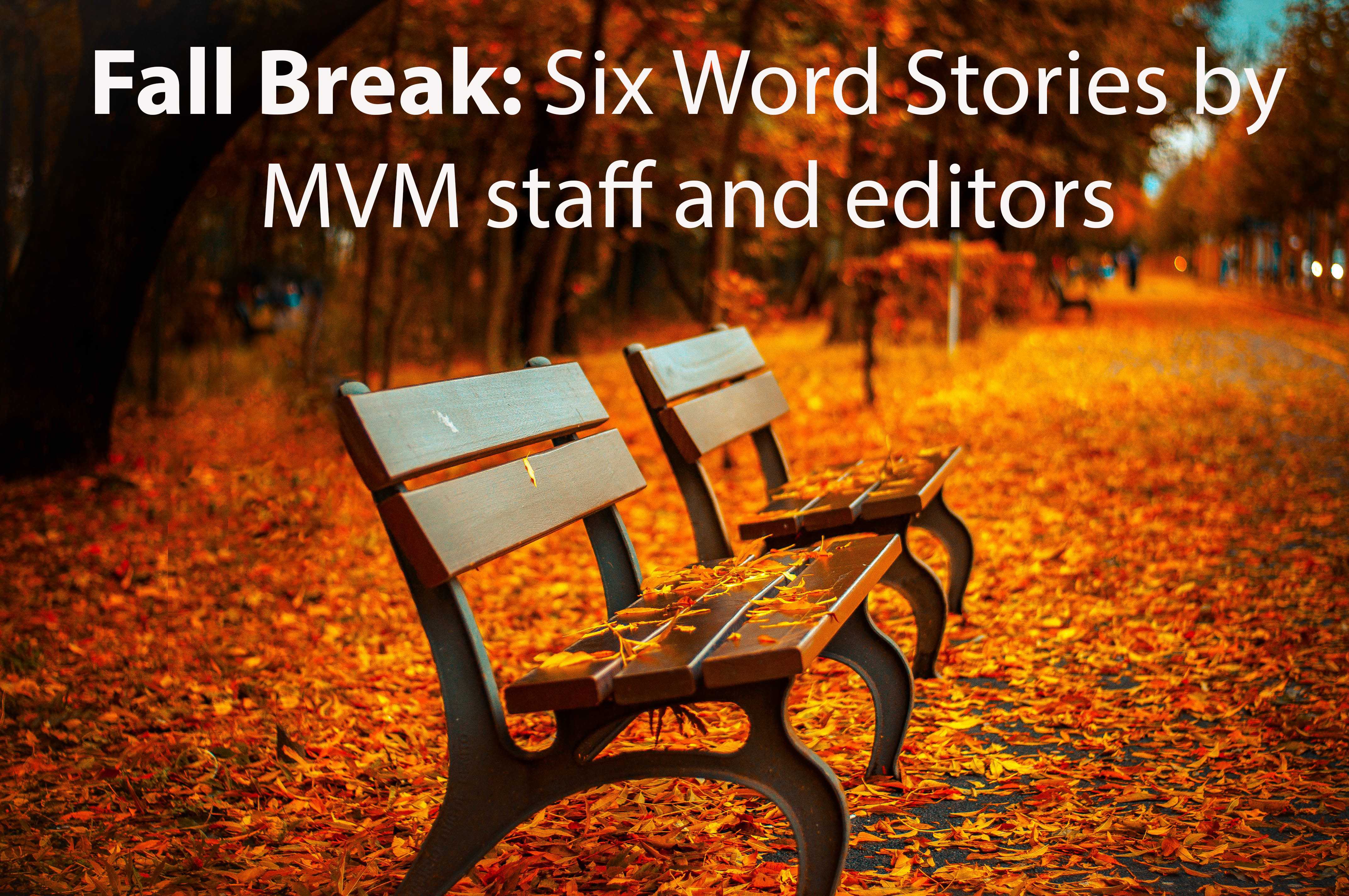 Mountain Vista Media: Six Word Stories