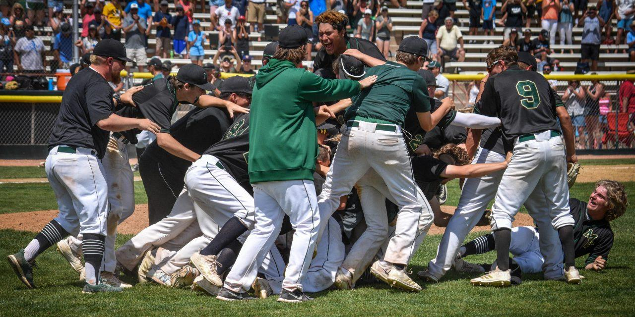 PHOTOS: Vista Baseball Soars Through the Final Four